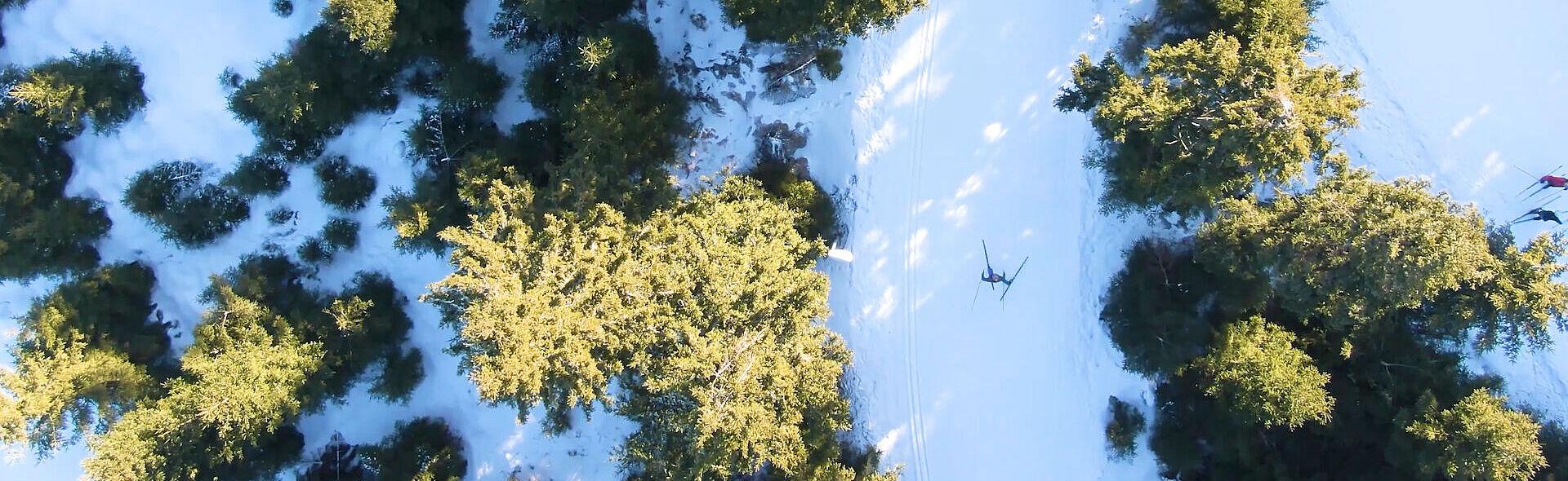 Skilanglauf Oberwiesenthal Ausdauersport Trainingszentrum Sparkassen-Skiarena